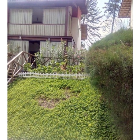 Loft Monte Flor II
